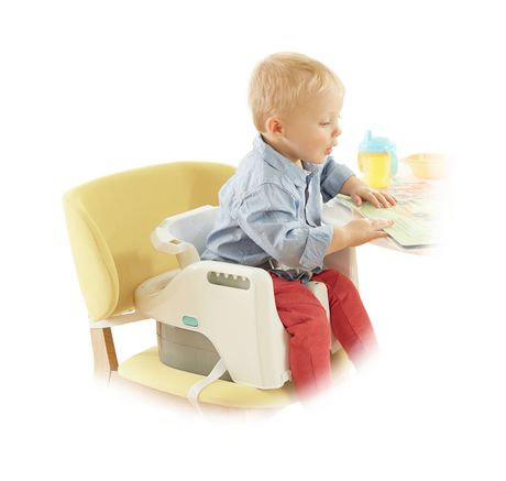 Fisher-Price 4-in-1 Total Clean High Chair - image 7 of 9