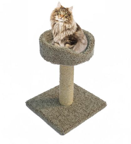 Sisal Scratch Post with Basket - image 1 of 4