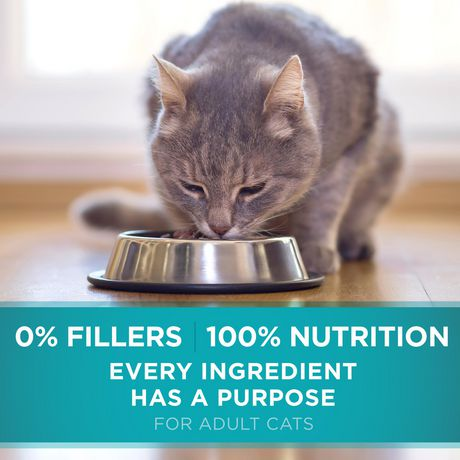 Purina ONE Sensitive Systems Natural Dry Cat Food - image 6 of 9