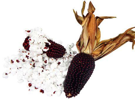 Extreme!™ Mini Maïs sur l'épi avec des balles pour les petits animaux - image 2 de 5