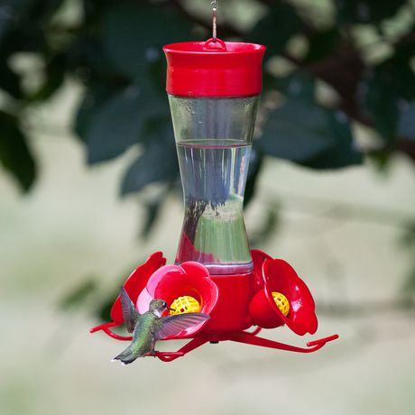 Perky Pet Pinch Waist Glass Hummingbird Feeder With Free