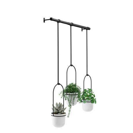 Umbra Triflora Hanging Planter for Window, Indoor Herb Garden, White/Black - image 4 of 5