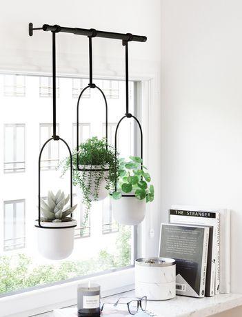 Umbra Triflora Hanging Planter for Window, Indoor Herb Garden, White/Black - image 2 of 5
