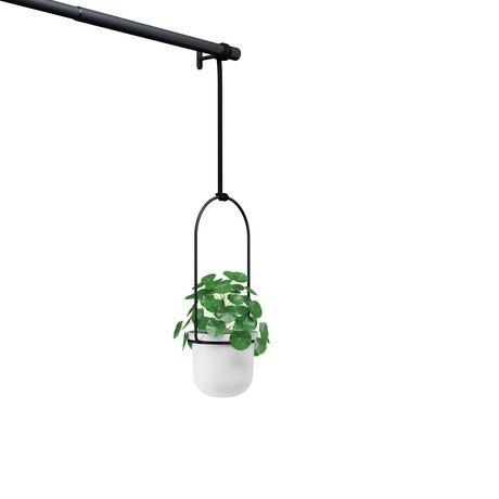 Umbra Triflora Hanging Planter for Window, Indoor Herb Garden, White/Black - image 3 of 5