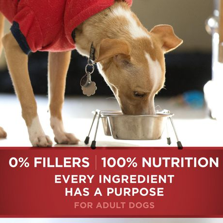 Purina ONE® Smartblend® Small Breed Natural Dry Dog Food - image 7 of 9