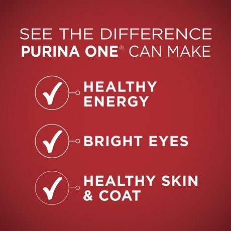 Purina ONE Smartblend Natural Dry Dog Food; Lamb & Rice Formula - image 5 of 9