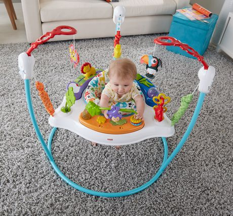 Fisher-Price Animal Activity Jumperoo - image 7 of 8