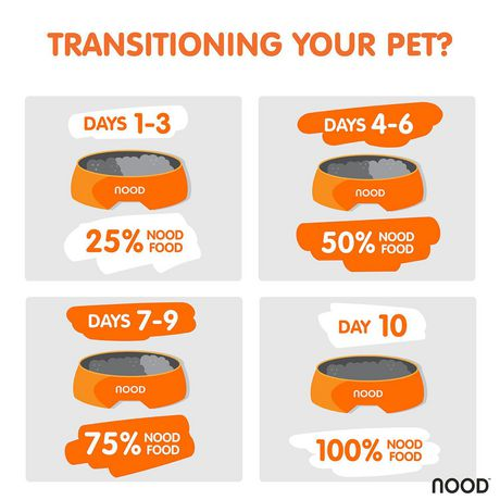 NOOD Small Breed Sustainable Salmon and Lentil Dry Dog Food - image 5 of 9