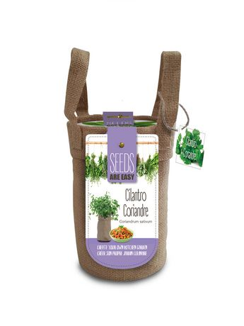 Seeds are Easy-Cilantro Herb - image 1 of 2