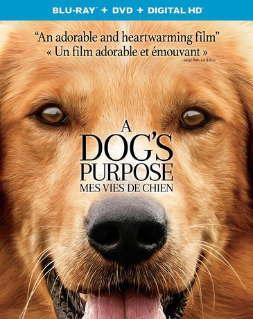 A Dog S Purpose Blu Ray Pictures