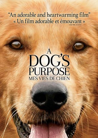 A Dog S Purpose Movie Walmart