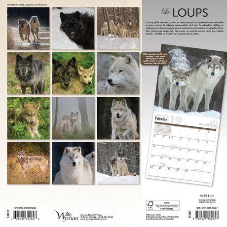 2019 Les Loups Calendrier - image 2 de 3