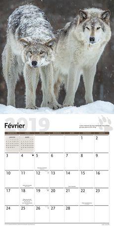 2019 Les Loups Calendrier - image 3 de 3