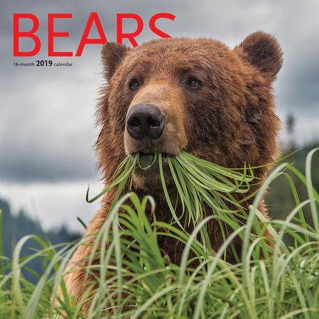 2019 Bears Calendar - image 1 of 3