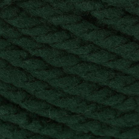 BERNAT SOFTEE CHUNKY YARN (100G/3.5OZ), DARK GREEN - image 2 de 4