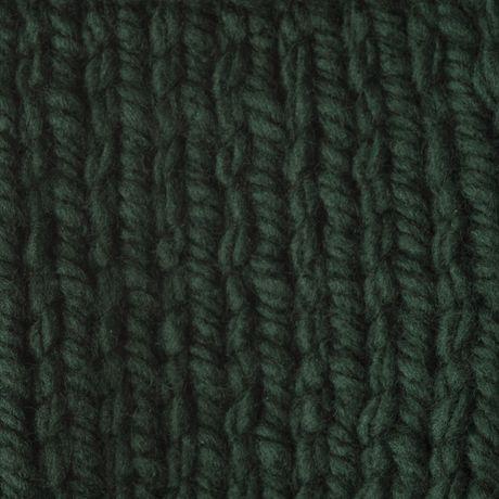 BERNAT SOFTEE CHUNKY YARN (100G/3.5OZ), DARK GREEN - image 4 de 4
