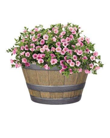 Jardini re d corative hometrends tonneau whisky de 20 5 for Jardiniere decorative