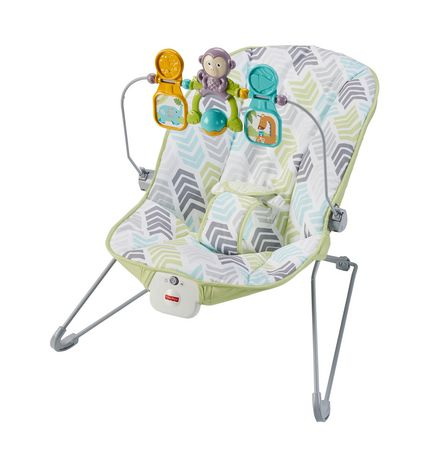 323b18d2e Fisher-Price Baby s Bouncer