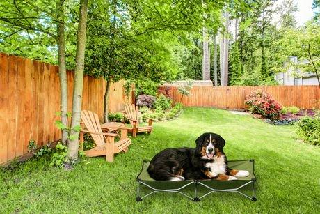 lit pliant sur lev pour chiens 8045 de carlson pet products avec mallette walmart canada. Black Bedroom Furniture Sets. Home Design Ideas
