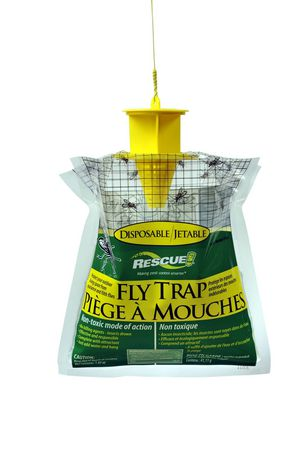 RESCUE! Disposable Fly Trap - image 1 of 1