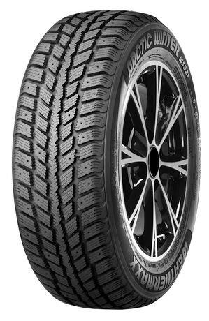 Weathermaxx 205/55R16 91 T Arctic Winter Tire | Walmart Canada