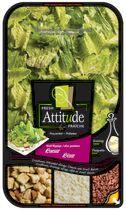 Fresh Attitude Prewashed Caesar Family Kit