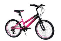 "Evolution 20"" Girls' Bike"