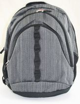 "Swiss Alps 15.6"" Padded Computer Backpack"