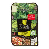 Fresh Attitude Waldorf Salad Kit