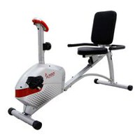 Sunny Health & Fitness SF-RB4417 Magnetic Recumbent Bike