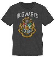 Warner Bros. Harry Potter Men's T-Shirt L