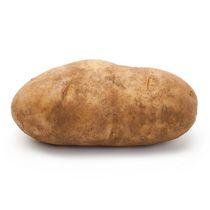 Potato, Russet