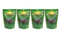Broccoli Brassica Blend 4 Pack - Mumm's Sprouting Seeds