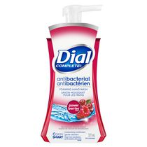 Dial Complete Antibacterial Power Berries Foaming Hand Wash-221ml