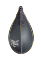 Everlast Elite Speed Bag