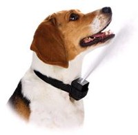 Cool Runners Citronella Spray Anti-Bark Dog Collar