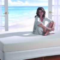 Spa Sensations 8-inch Mattress With Memory Foam Queen