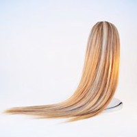 Fashion Hair Long Straight Jaw Comb Caramel Blonde
