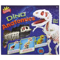 Ens. d'artisanat Dino Anatomics de Scientific Explorer
