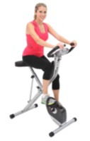 Exerpeutic 310 Magnetic Upright Bike with Pulse Sensors