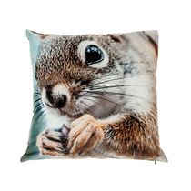 Squirrel With Acorn - Velvet Filled Cushion  - Set of 2