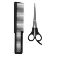 Wahl Scissors & Comb Set