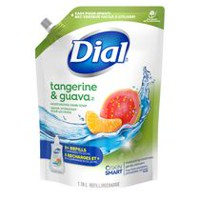 Dial Eco-Smart Naturals Tangerine and Guava Hand Soap Refill
