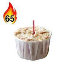 Qwick Wick Fire Starter 65