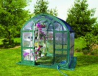 SpringHouse 6' x 6' Clear Pop-Up Greenhouse