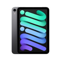 iPad mini 256GB WiFi (6th gen)