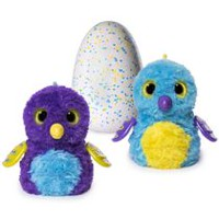 Hatchimals Glittering Garden - Hatching Egg - Interactive Creature – Shimmering Draggle by Spin Master