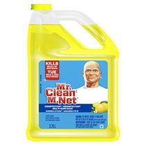 Mr. Clean Multi-Purpose Cleaner, Summer Citrus