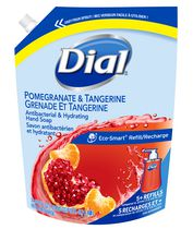 Dial Antibacterial Eco-Smart Pomegranate & Tangerine Hydrating Hand Soap Refill 1.18L