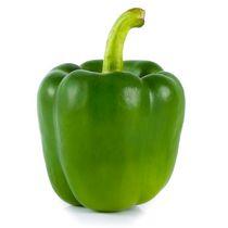 Pepper, Green Bell